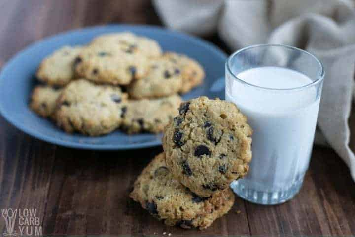 Coconut Flour Chocolate Chip Cookies (Keto)