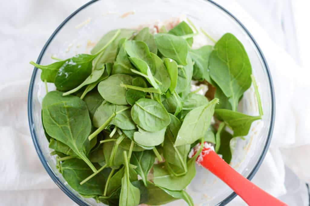 A bowl of salad on a plate, with Spinach