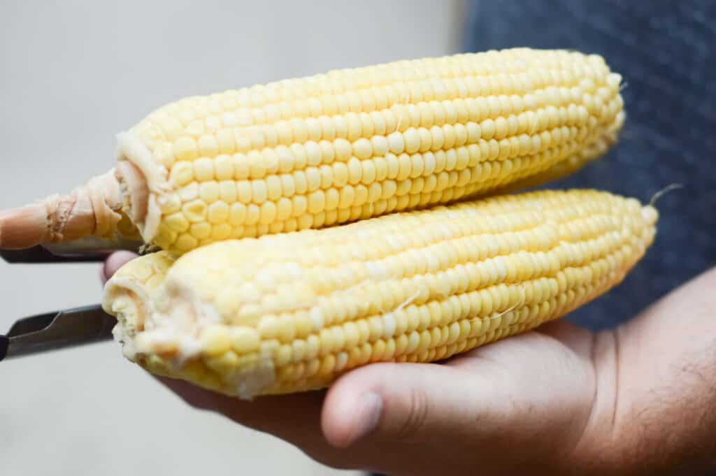 A piece of food, with Chicken and Corn on the cob