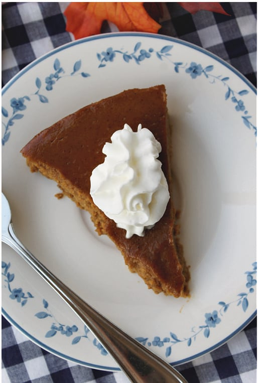 image of slice of pumpkin pie with whipped cream